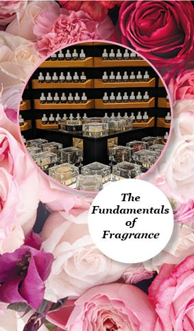 Academy Training: The Fundamentals of Fragrance